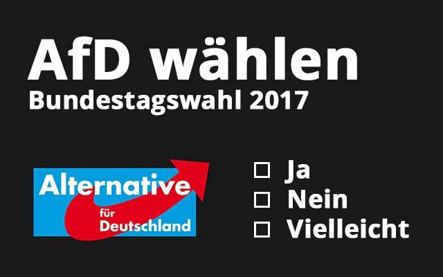 AfD wählen – Welche Auswirkungen, Vorteile und Nachteile hat das?